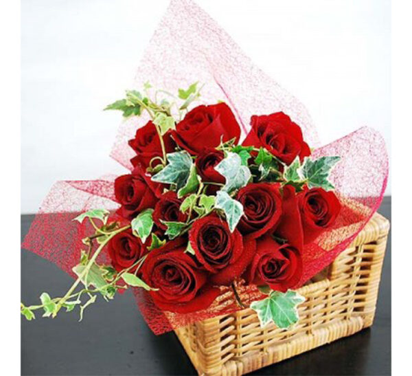 Red roses abloom
