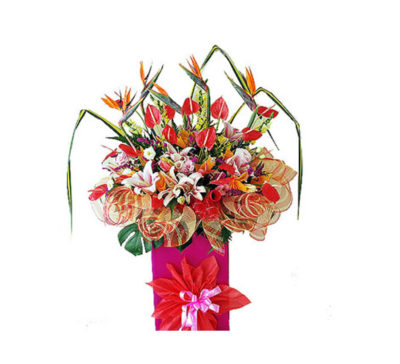 corporate-flowers-adisia-