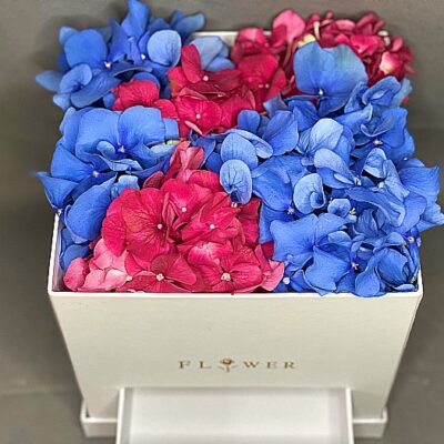mix of red and blue hydrangeas